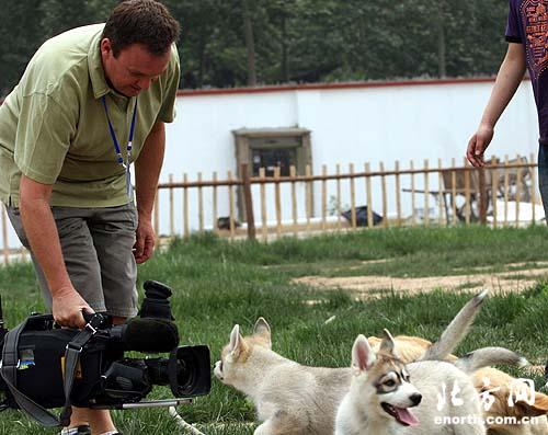 人与动物相处融洽-海外-网