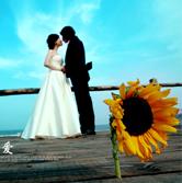天津市各区民政局婚姻登记处联系方式