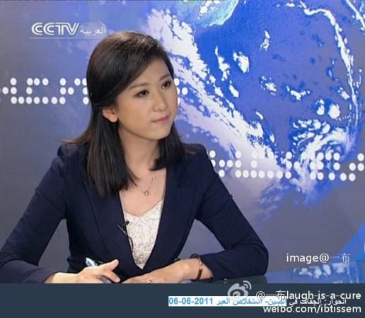 央视最妩媚女记者系北语高材生 曾任战地记者