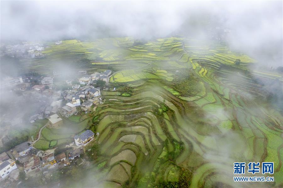 贵阳高坡乡:云雾轻飘似仙境