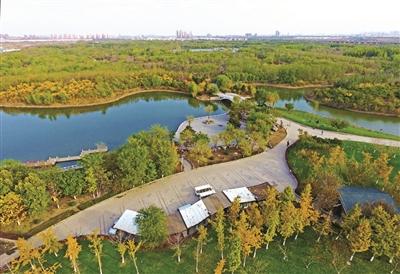 """滨海新区多个生态公园""""刷新""""颜值"""