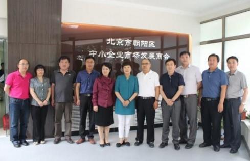 北京市朝阳区中小企业市场发展商会在京召开新春年会