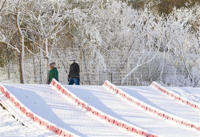 津城本周末或飘初雪 27日气温-5℃至4℃