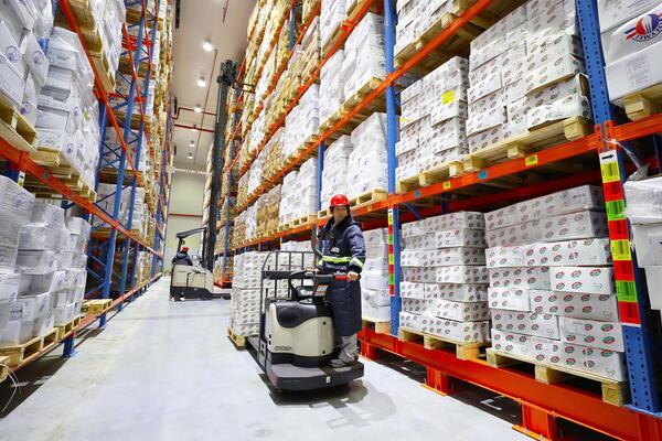 东疆保税港区推动冷链企业安全复工 可向市场提供千吨肉类