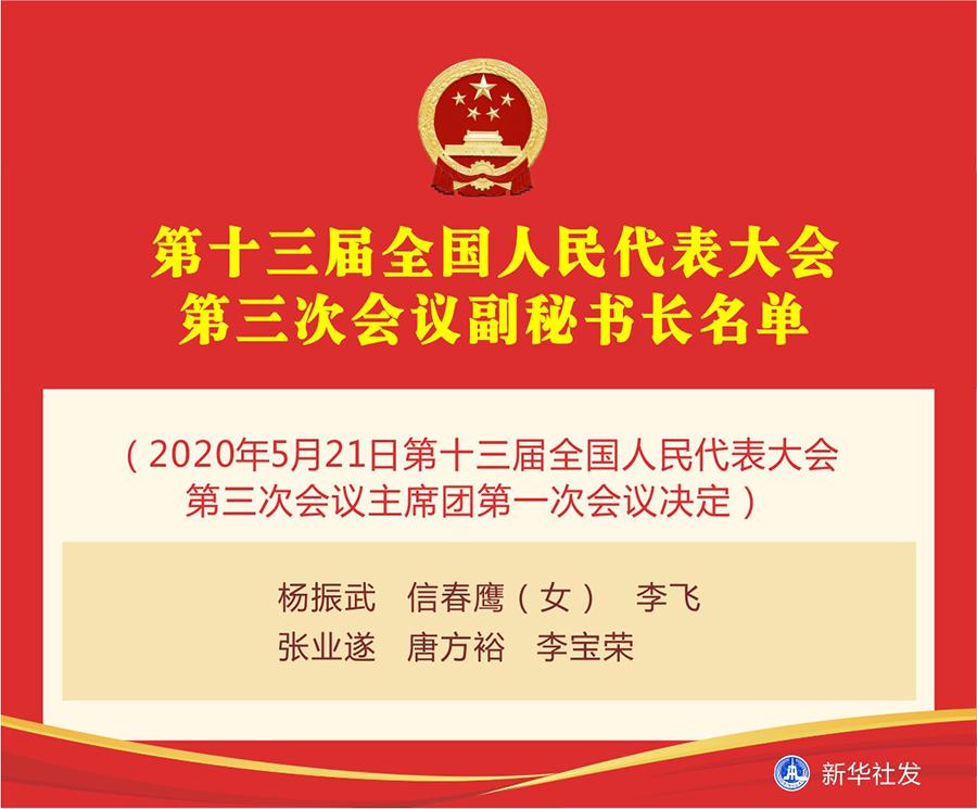 第十三届全国人民代表大会第三次会议副秘书长名单