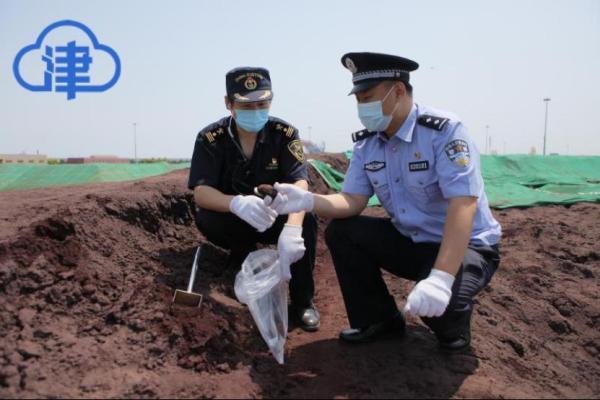 天津海关查获49.8万吨禁止进口固体废物