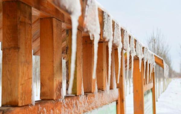 【图片新闻】津南区:瑞雪来 丰年到