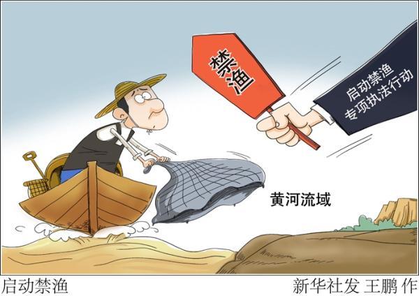 黄河开始实施禁渔期制度 是否影响消费者吃鱼?