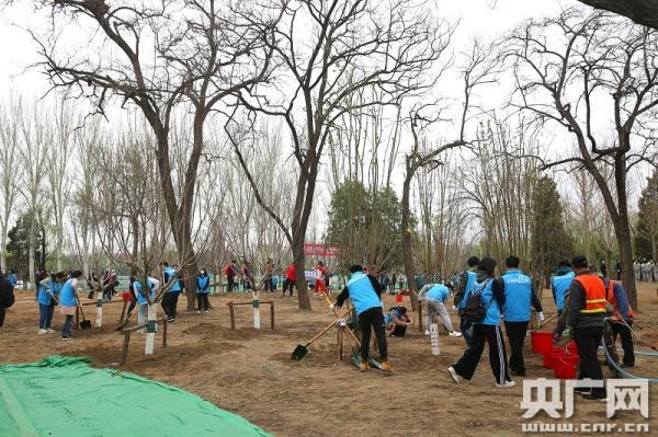 全民义务植树开展40周年 中国成为全球森林资源增长最多的国家